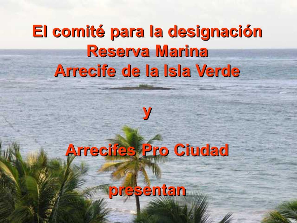 El comité para la designación Arrecife de la Isla Verde