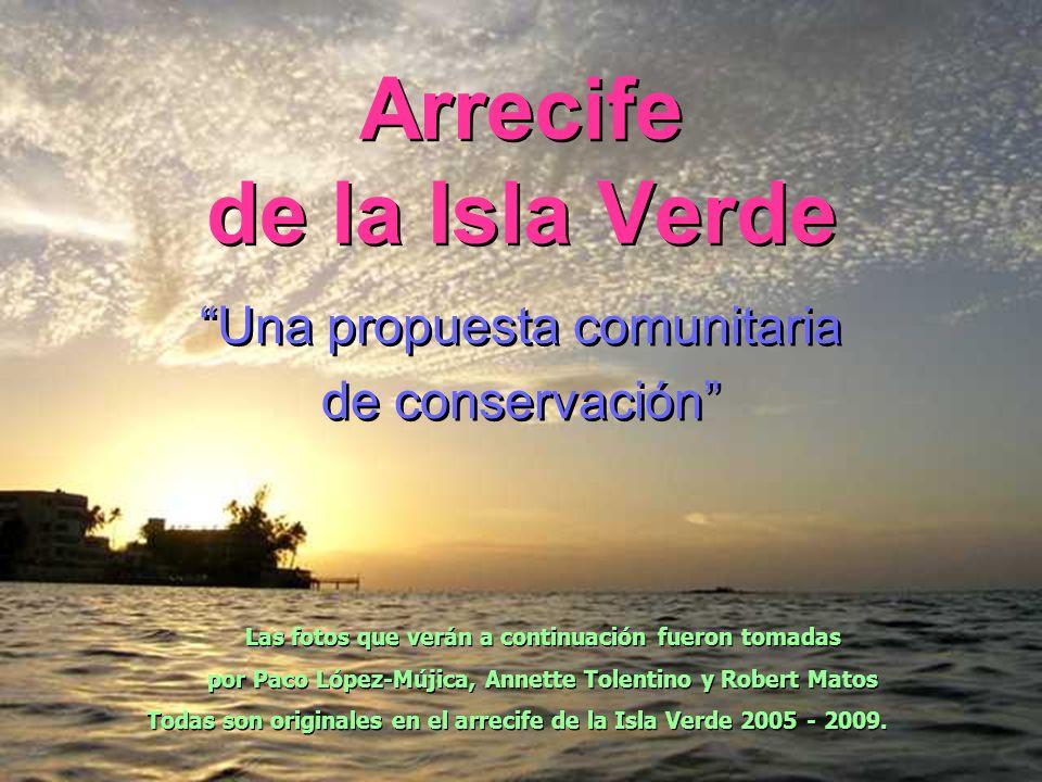 Arrecife de la Isla Verde