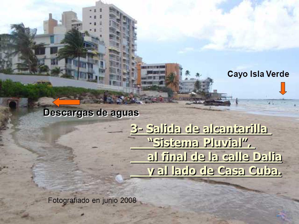 3- Salida de alcantarilla Sistema Pluvial ,