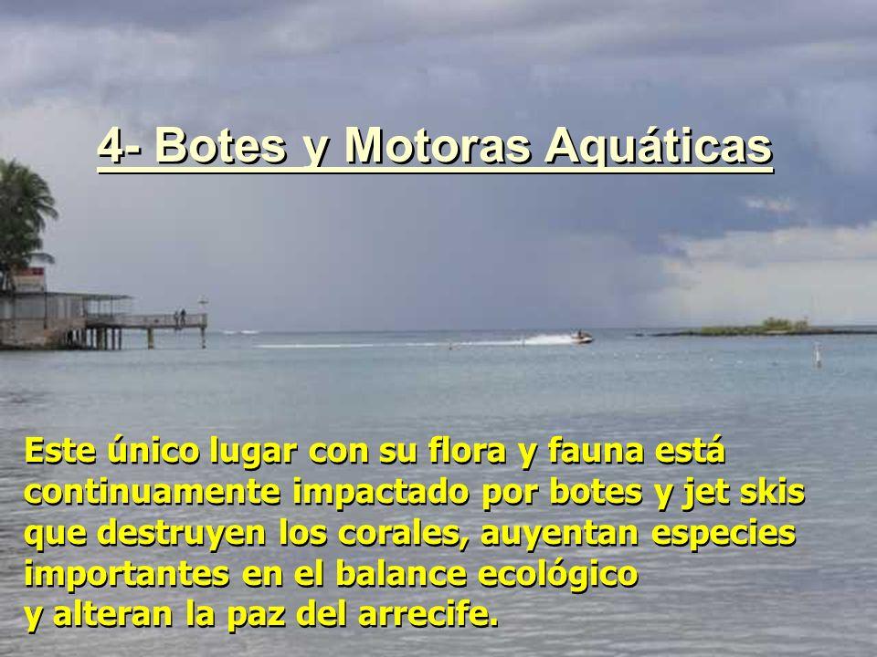 4- Botes y Motoras Aquáticas