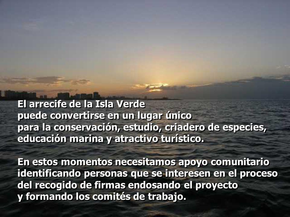 El arrecife de la Isla Verde