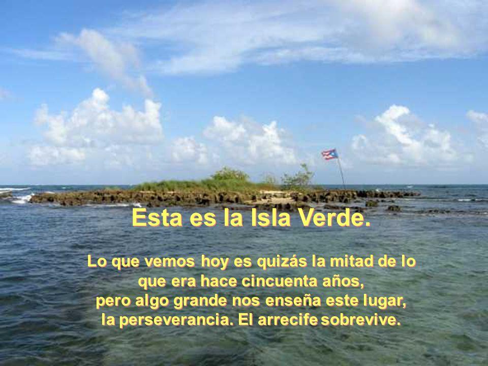 De la Isla Esta es la Isla Verde.