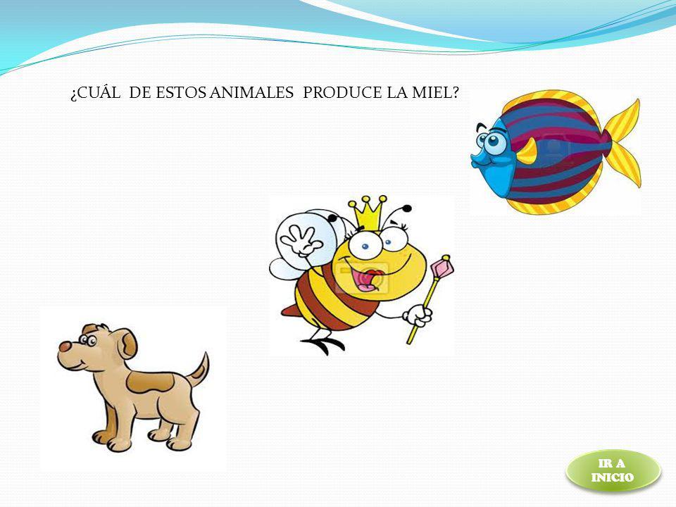 ¿CUÁL DE ESTOS ANIMALES PRODUCE LA MIEL