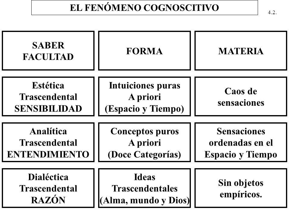 EL FENÓMENO COGNOSCITIVO