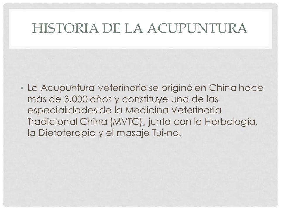HISTORIA DE LA ACUPUNTURA