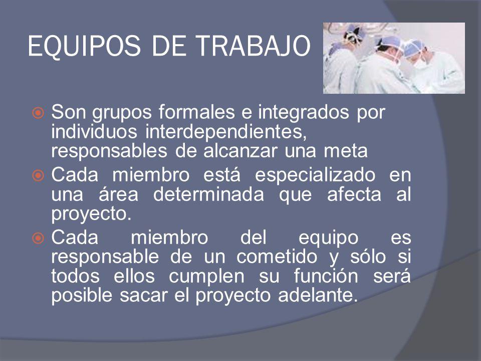 EQUIPOS DE TRABAJO Son grupos formales e integrados por individuos interdependientes, responsables de alcanzar una meta.