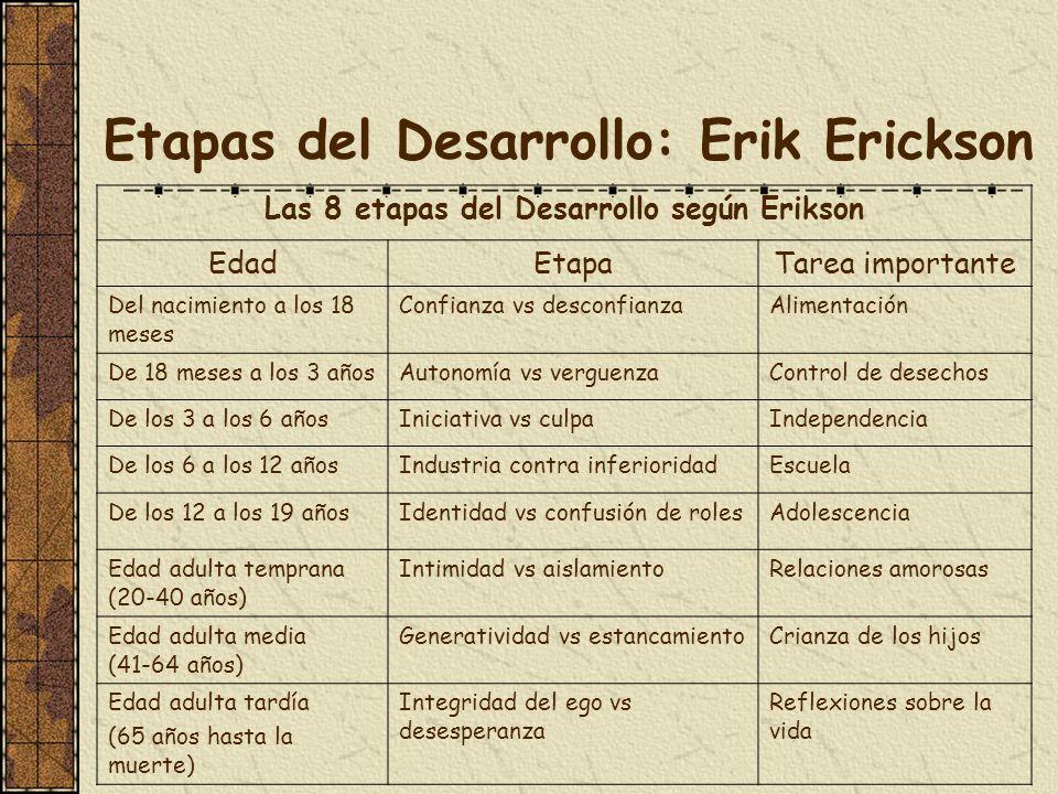 Etapas del Desarrollo: Erik Erickson