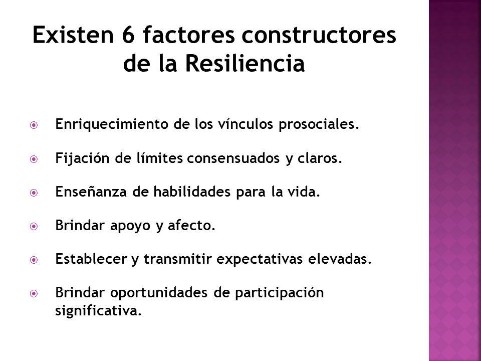 Existen 6 factores constructores de la Resiliencia