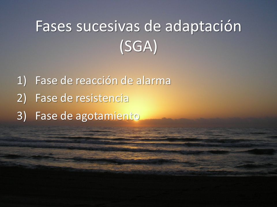 Fases sucesivas de adaptación (SGA)