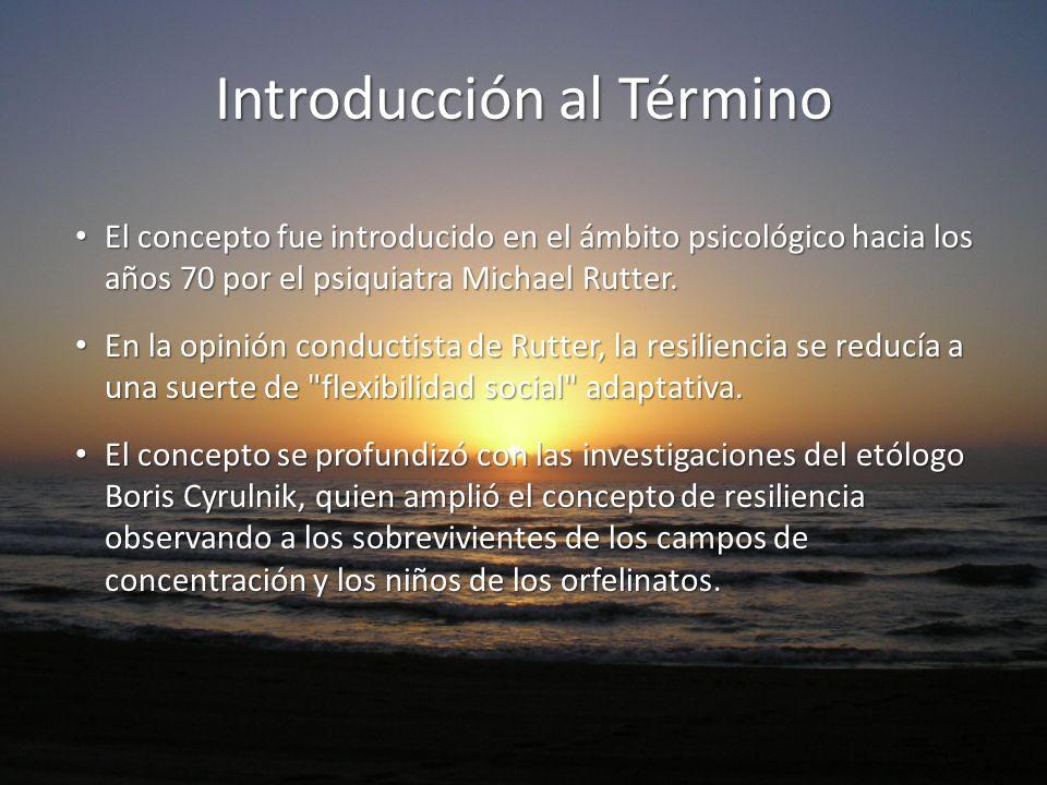 Introducción al Término