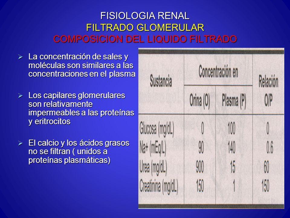 FISIOLOGIA RENAL FILTRADO GLOMERULAR COMPOSICION DEL LIQUIDO FILTRADO