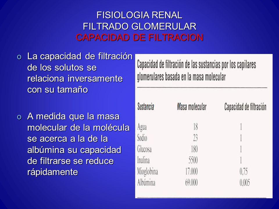 FISIOLOGIA RENAL FILTRADO GLOMERULAR CAPACIDAD DE FILTRACION