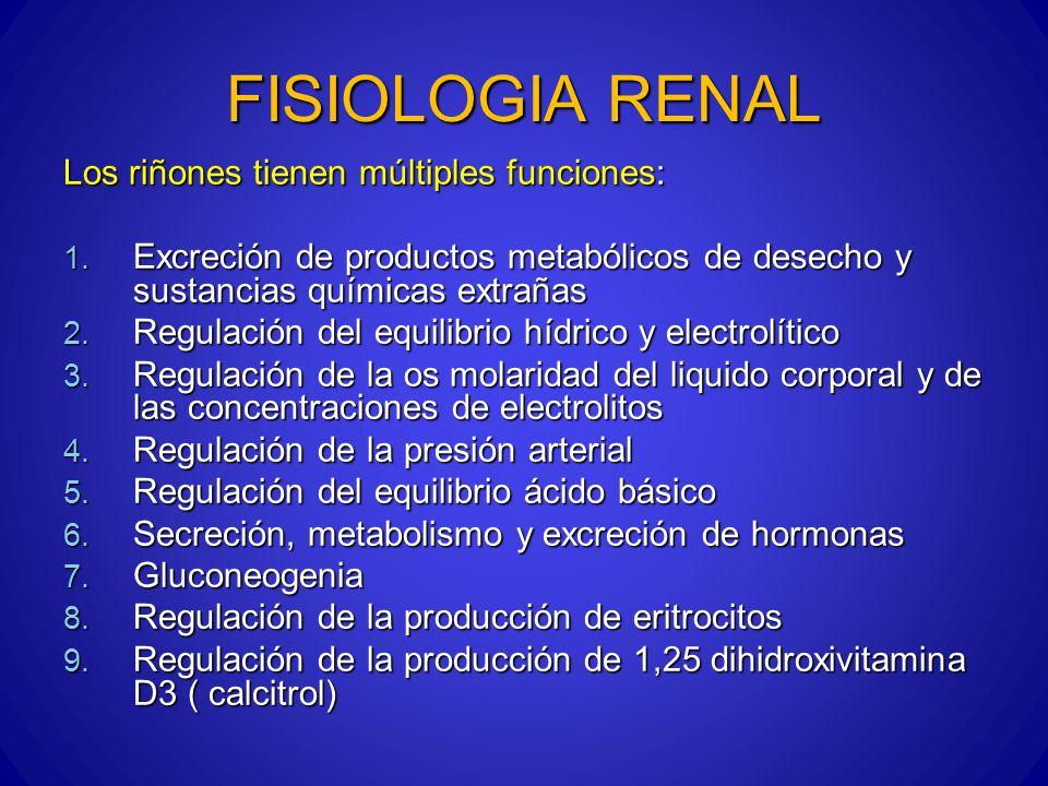 FISIOLOGIA RENAL Los riñones tienen múltiples funciones: