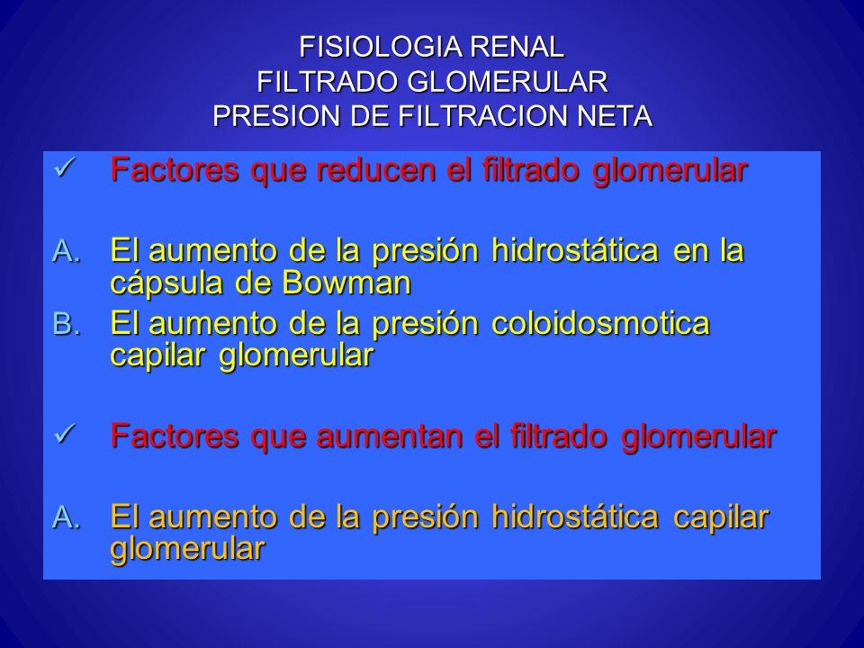 FISIOLOGIA RENAL FILTRADO GLOMERULAR PRESION DE FILTRACION NETA