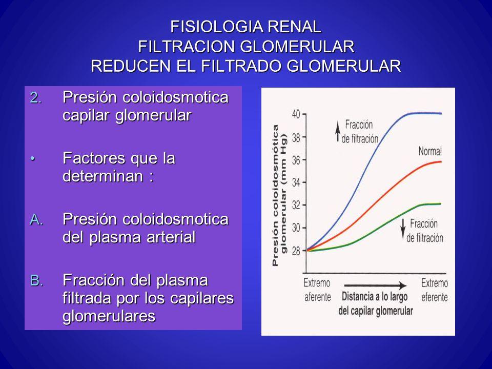 FISIOLOGIA RENAL FILTRACION GLOMERULAR REDUCEN EL FILTRADO GLOMERULAR