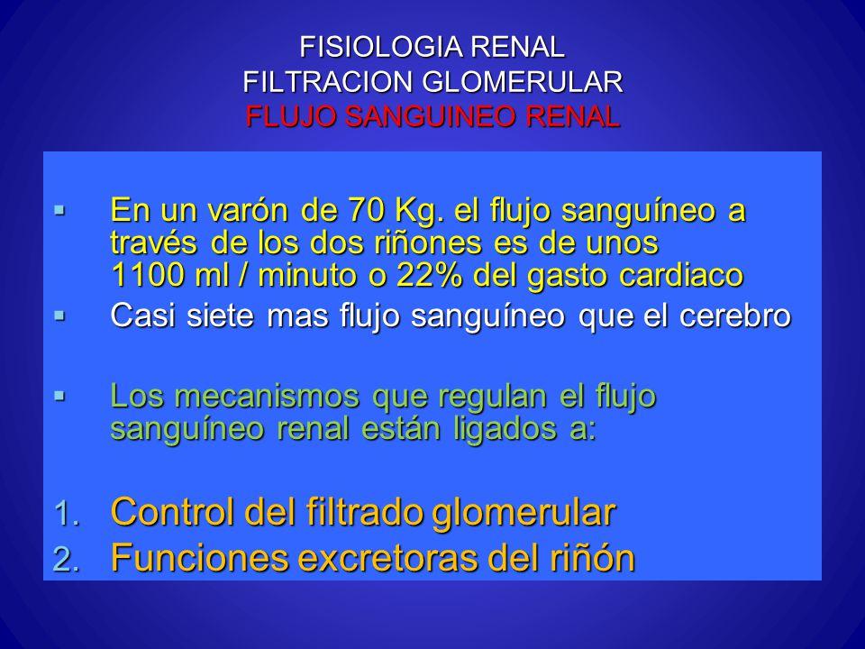 FISIOLOGIA RENAL FILTRACION GLOMERULAR FLUJO SANGUINEO RENAL