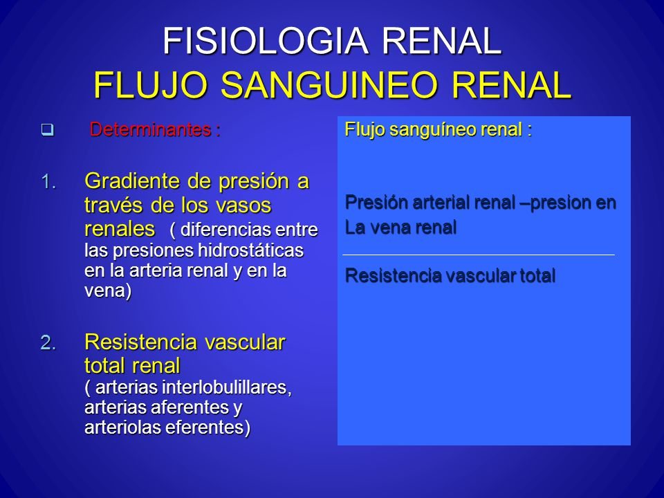 FISIOLOGIA RENAL FLUJO SANGUINEO RENAL