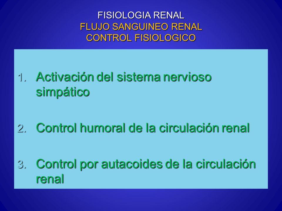 FISIOLOGIA RENAL FLUJO SANGUINEO RENAL CONTROL FISIOLOGICO