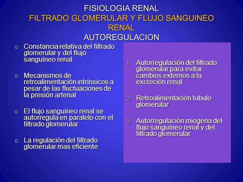 FISIOLOGIA RENAL FILTRADO GLOMERULAR Y FLUJO SANGUINEO RENAL AUTOREGULACION