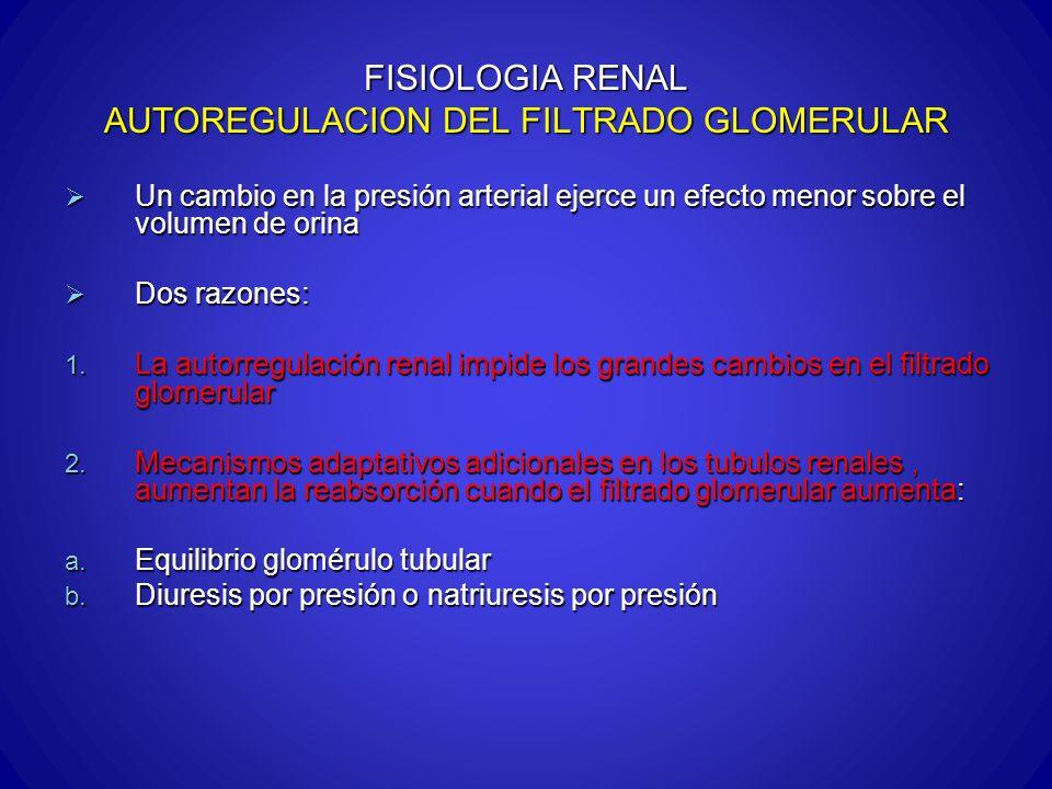 FISIOLOGIA RENAL AUTOREGULACION DEL FILTRADO GLOMERULAR