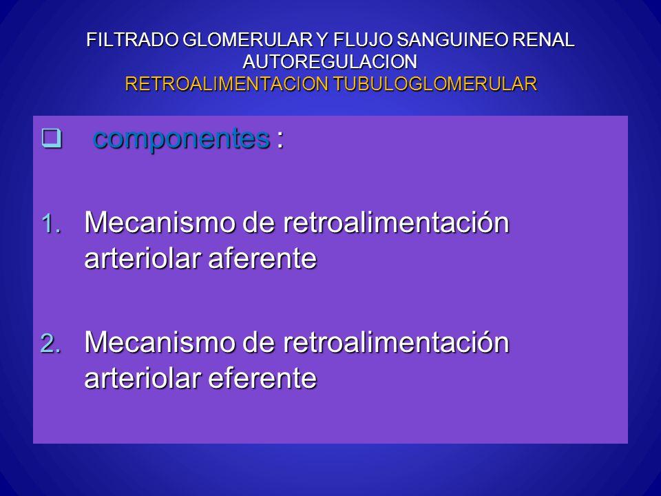 Mecanismo de retroalimentación arteriolar aferente