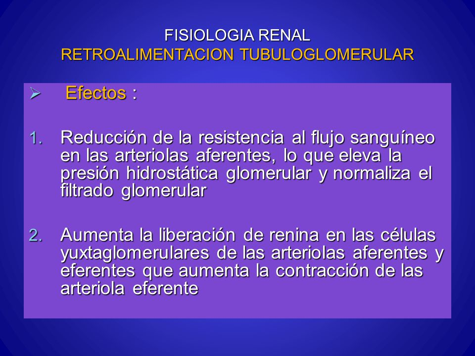 FISIOLOGIA RENAL RETROALIMENTACION TUBULOGLOMERULAR