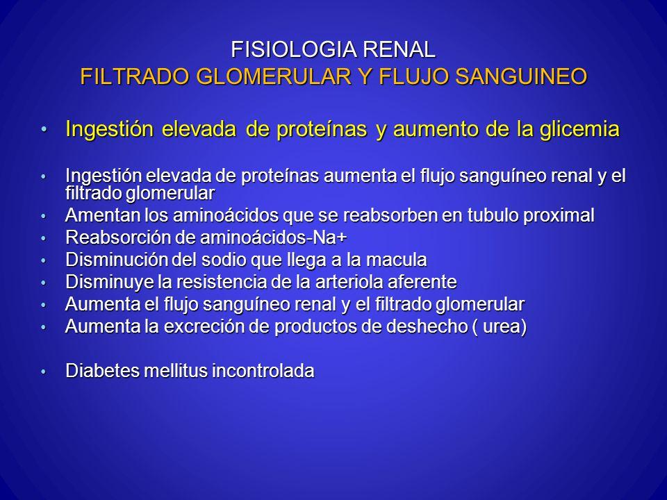 FISIOLOGIA RENAL FILTRADO GLOMERULAR Y FLUJO SANGUINEO