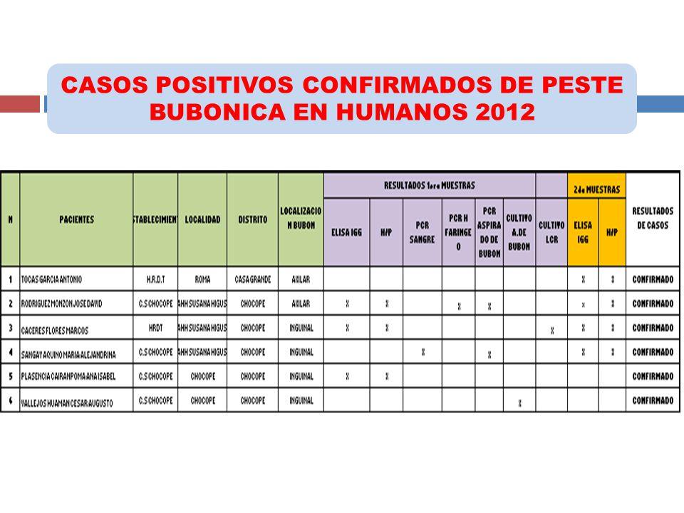CASOS POSITIVOS CONFIRMADOS DE PESTE BUBONICA EN HUMANOS 2012