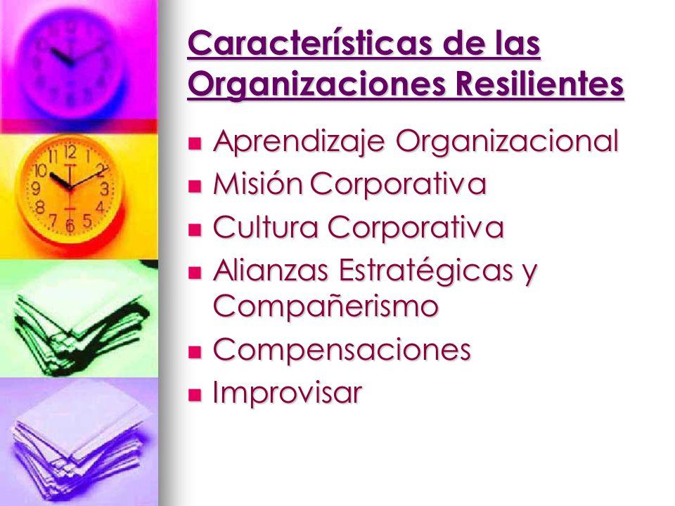 Características de las Organizaciones Resilientes