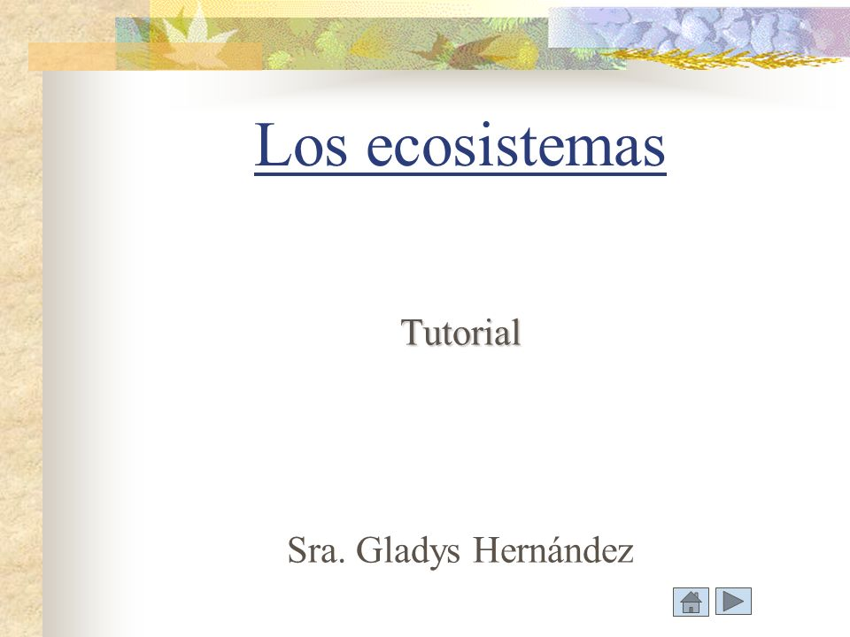 Los ecosistemas Tutorial Sra. Gladys Hernández