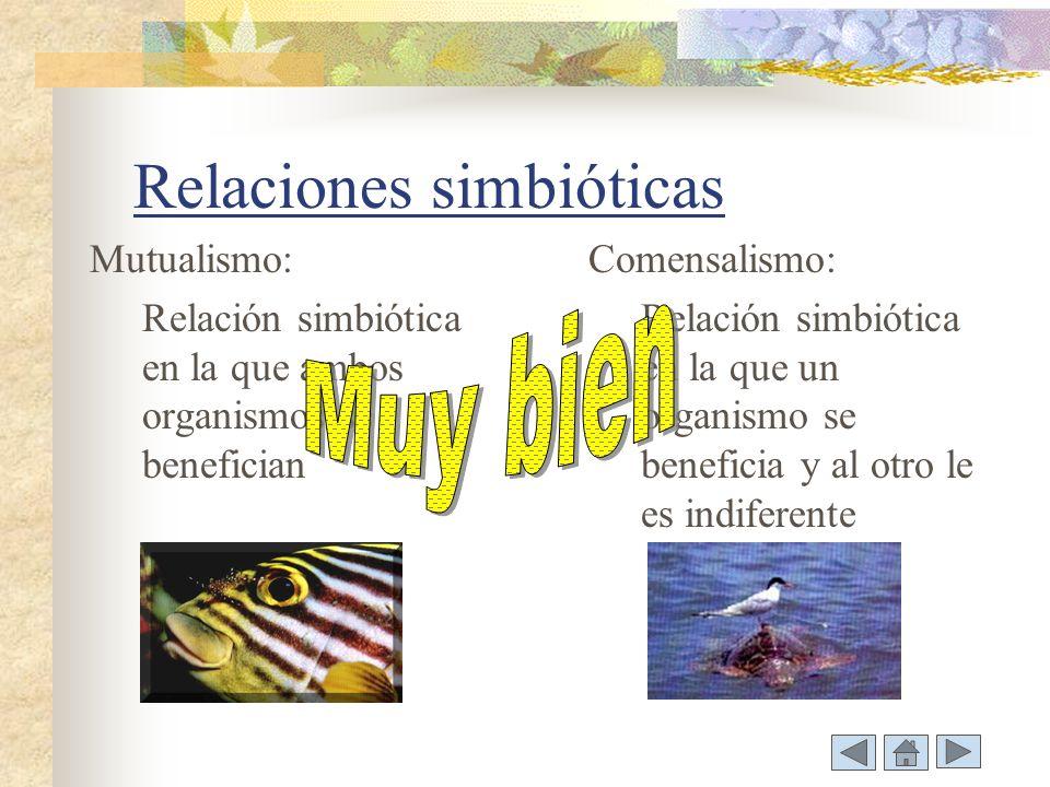 Relaciones simbióticas
