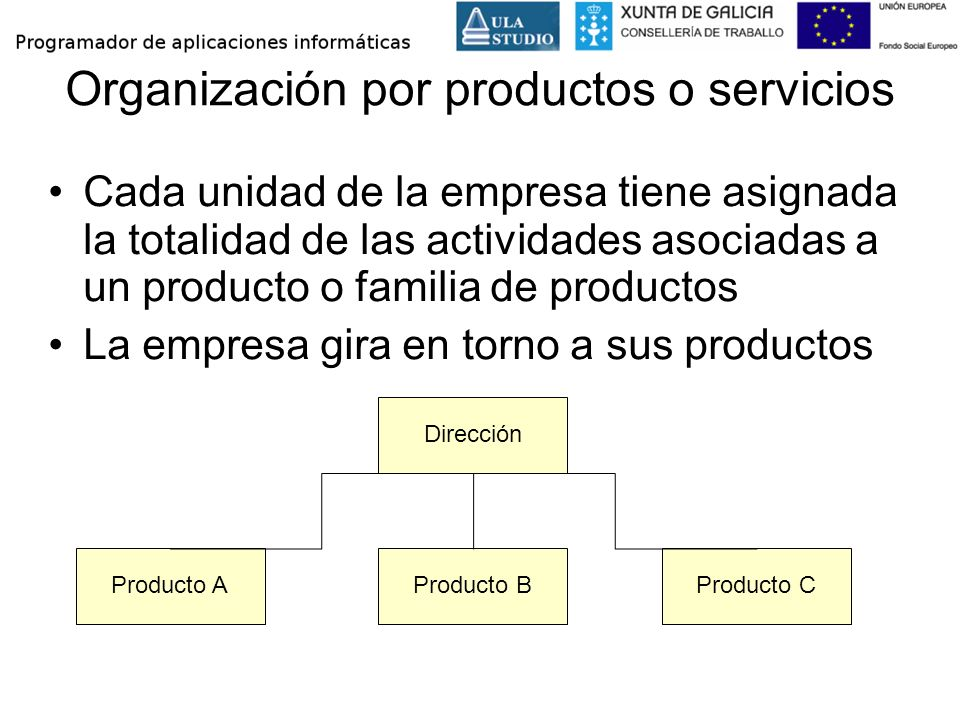 Organización por productos o servicios