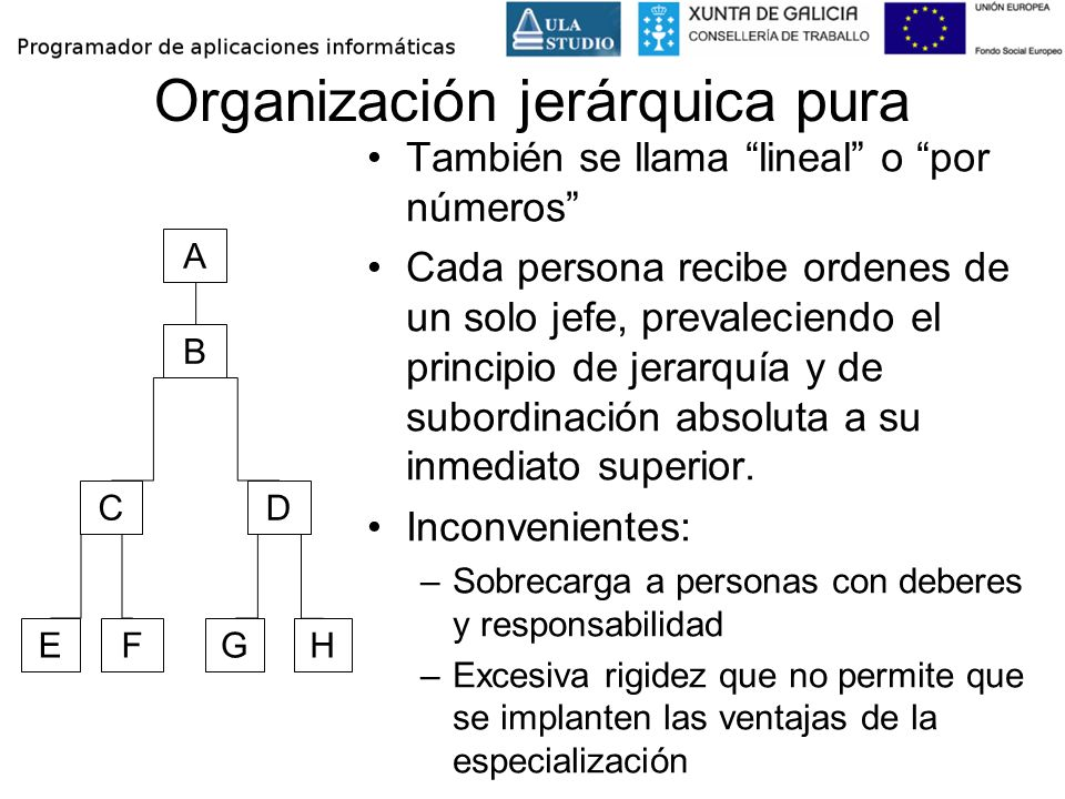 Organización jerárquica pura