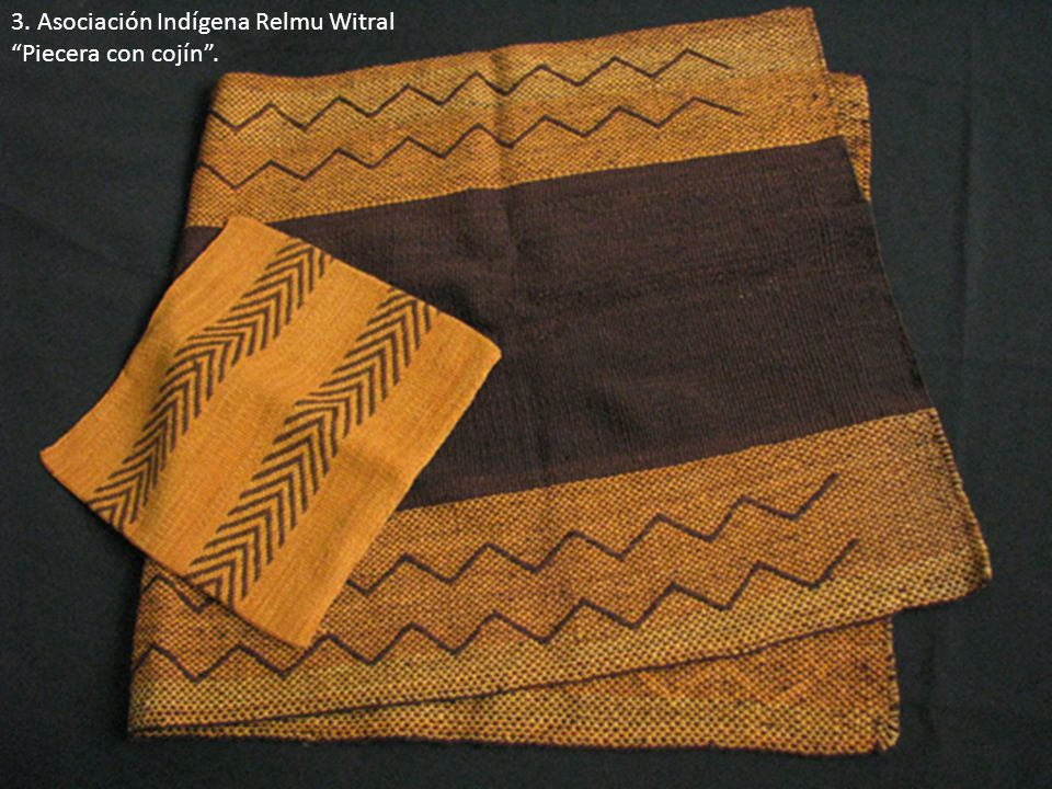 3. Asociación Indígena Relmu Witral