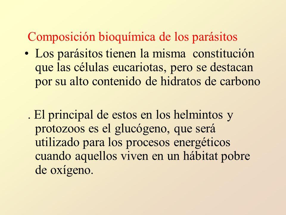 Composición bioquímica de los parásitos