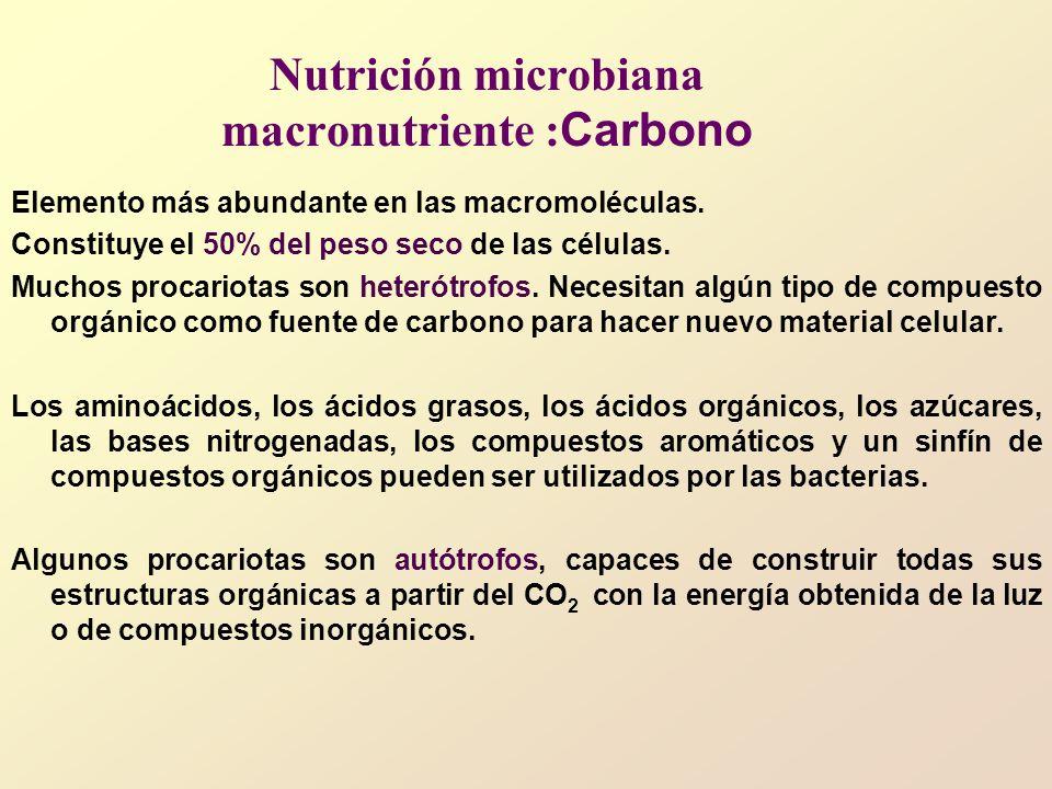 Nutrición microbiana macronutriente :Carbono