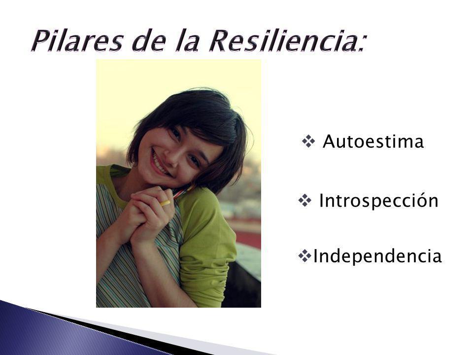 Pilares de la Resiliencia: