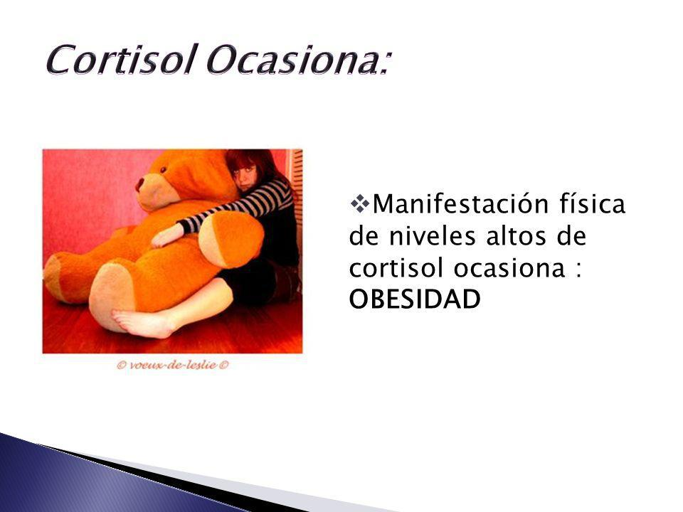 Cortisol Ocasiona: Manifestación física de niveles altos de cortisol ocasiona : OBESIDAD