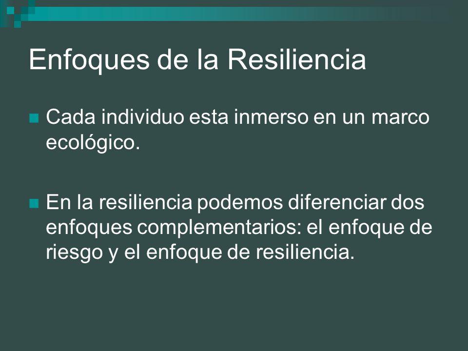 Enfoques de la Resiliencia