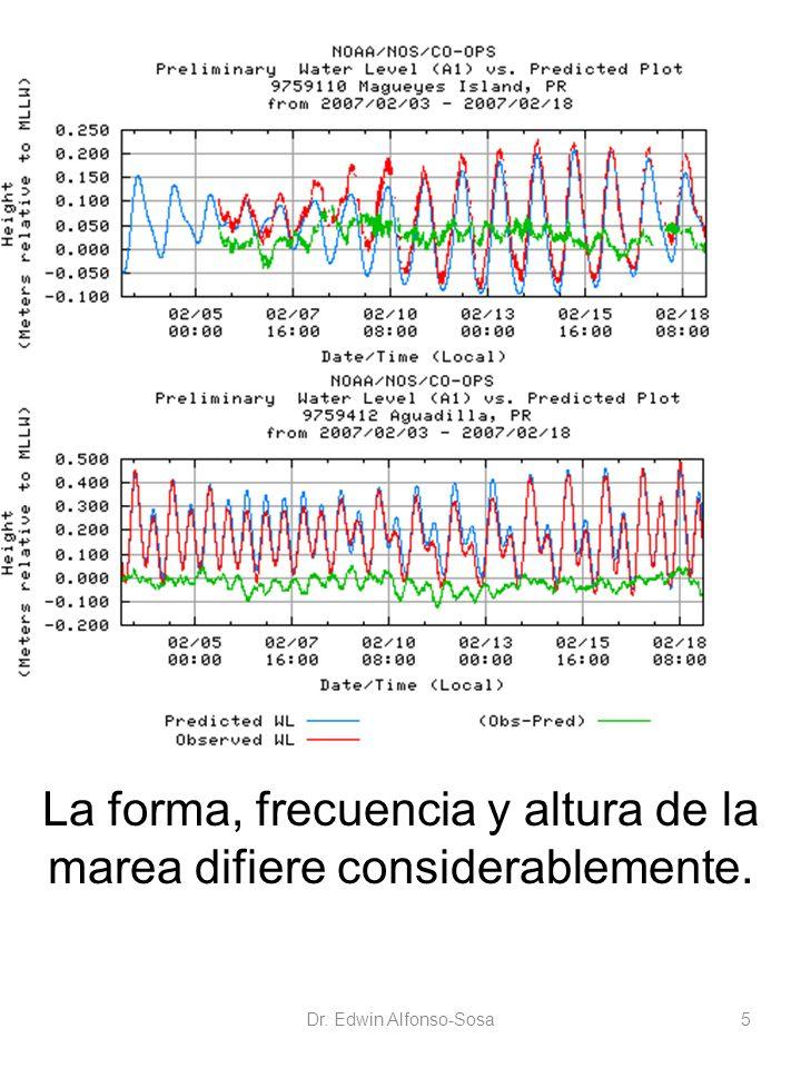 La forma, frecuencia y altura de la marea difiere considerablemente.