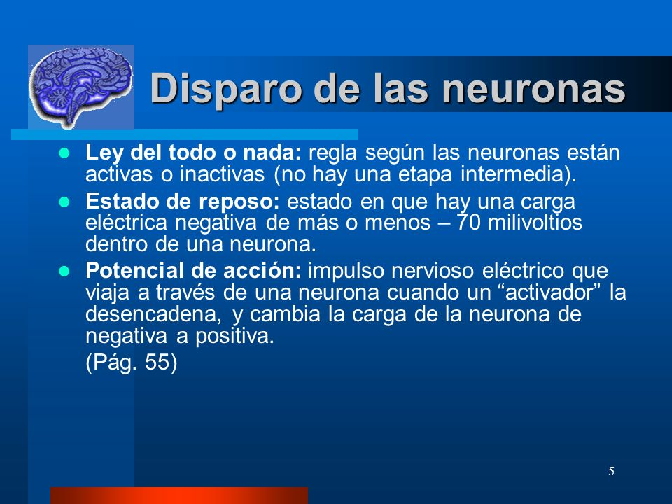 Disparo de las neuronas