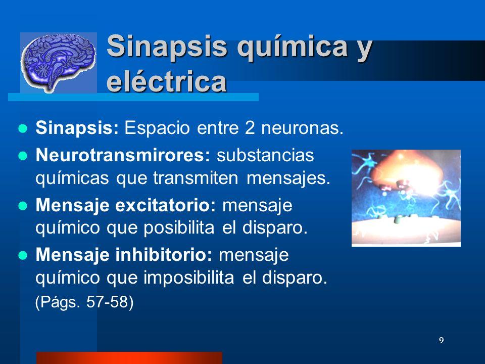 Sinapsis química y eléctrica