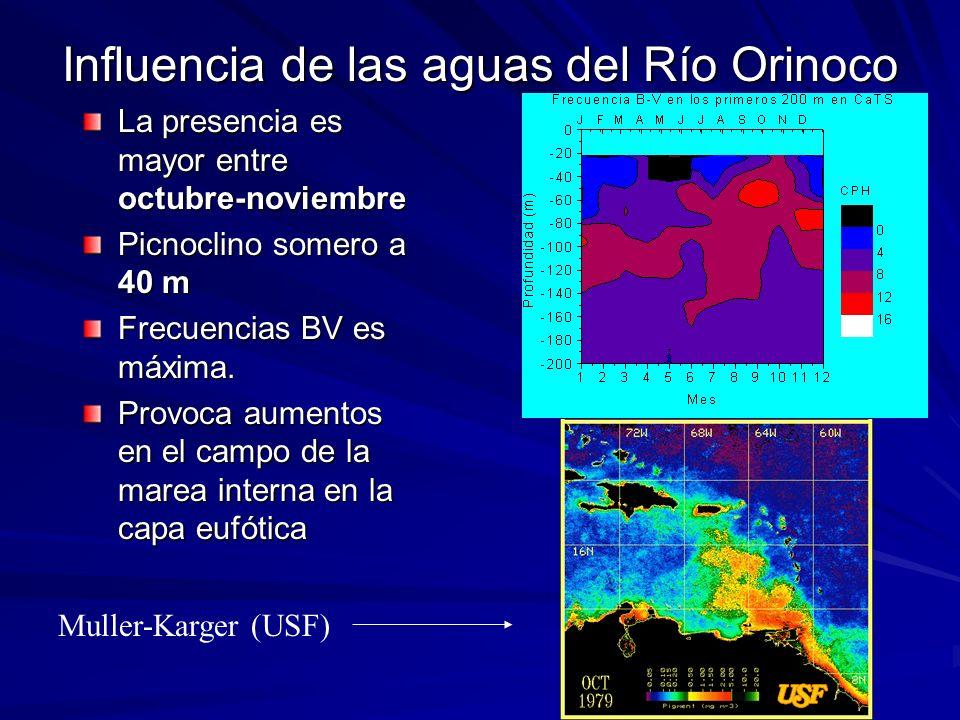 Influencia de las aguas del Río Orinoco