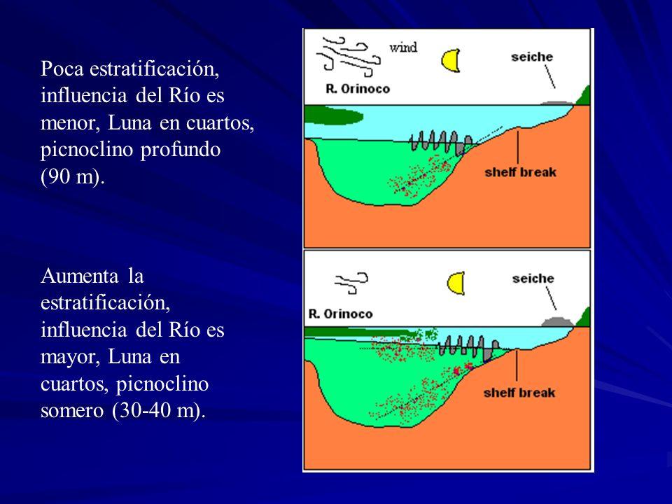 Poca estratificación, influencia del Río es menor, Luna en cuartos, picnoclino profundo (90 m).
