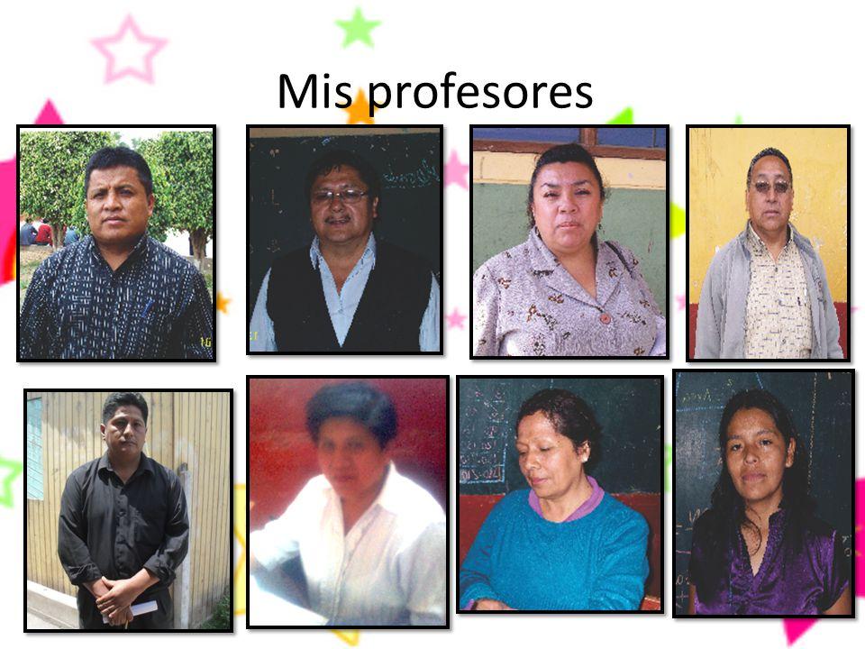 Mis profesores