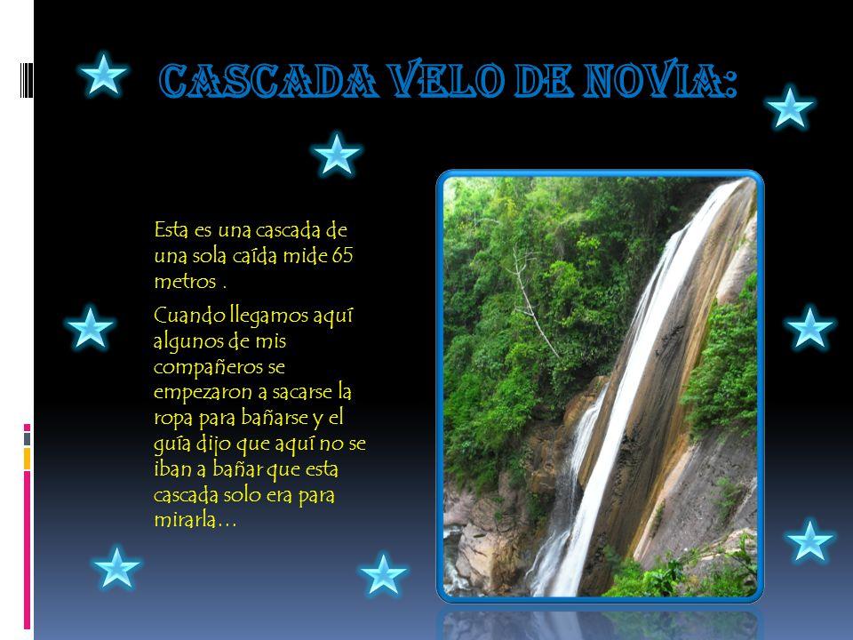 Cascada velo de novia: Esta es una cascada de una sola caída mide 65 metros .