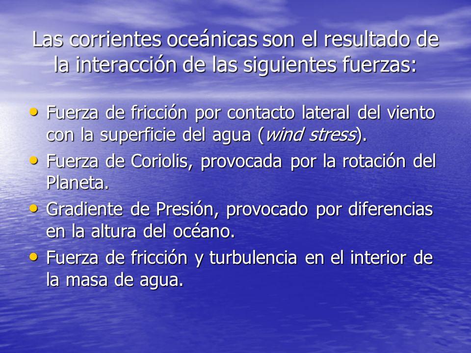 Las corrientes oceánicas son el resultado de la interacción de las siguientes fuerzas: