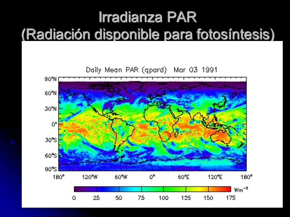 Irradianza PAR (Radiación disponible para fotosíntesis)