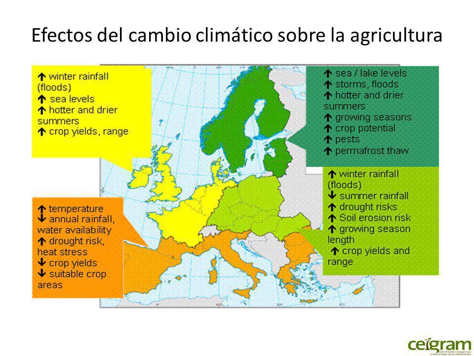 Efectos del cambio climático sobre la agricultura