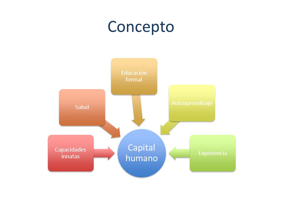 Concepto Capital humano Educación formal Autoaprendizaje Salud